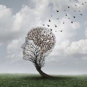 memory-loss-brain-health.jpg