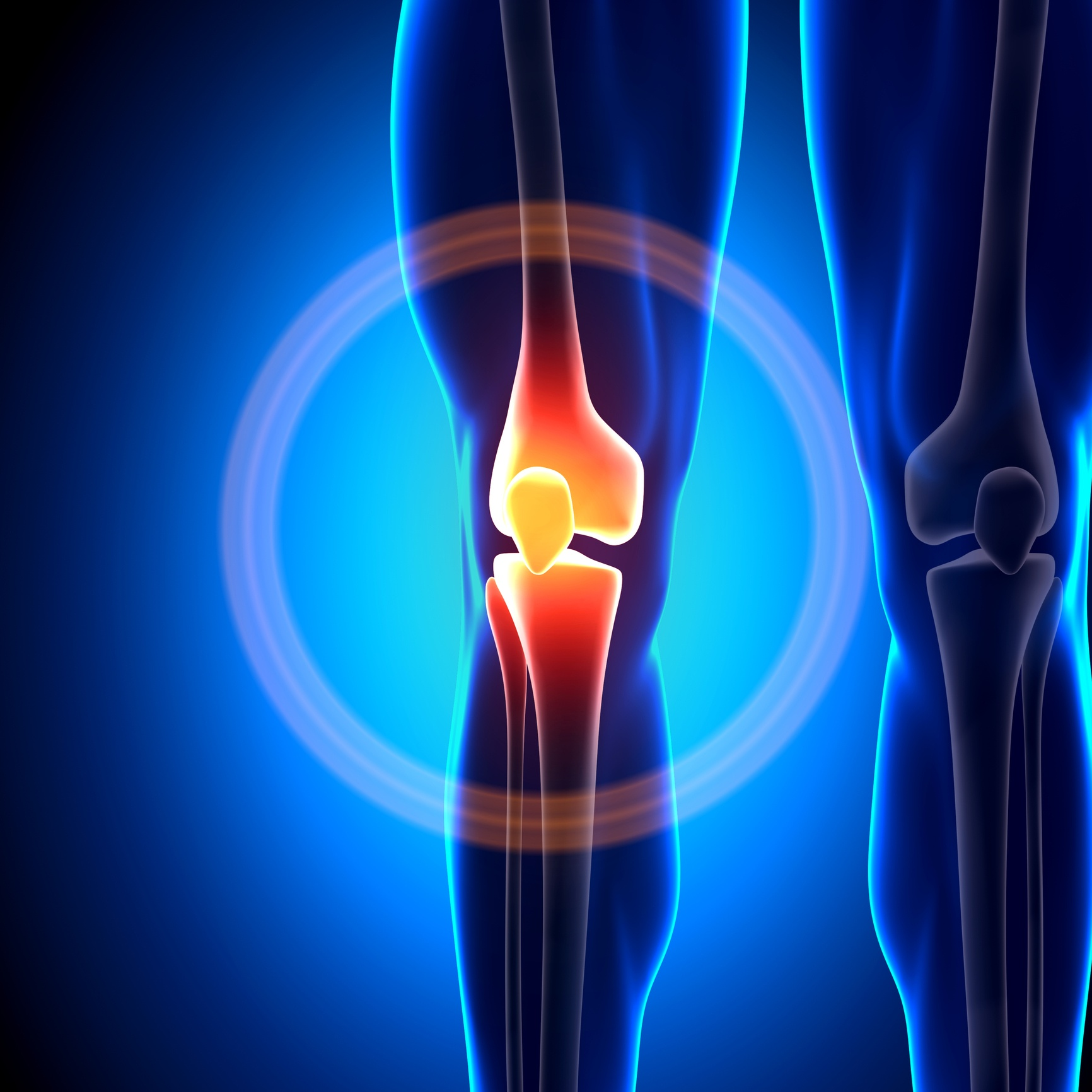 relive-joint-pain-throughout-the-day.