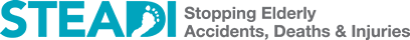 STEADI-wide-logo-500w.png