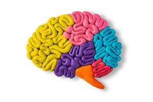 brain health news