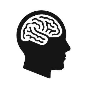 brain health-2