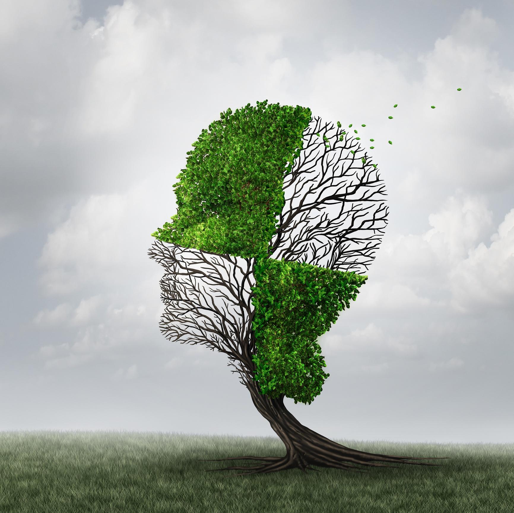 prevent-cognitive-decline
